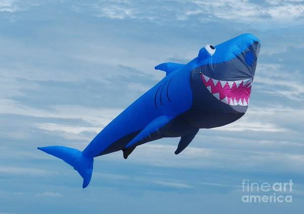 Flying A Kite Photograph - Shark Kite Flight by Snapshot Studio