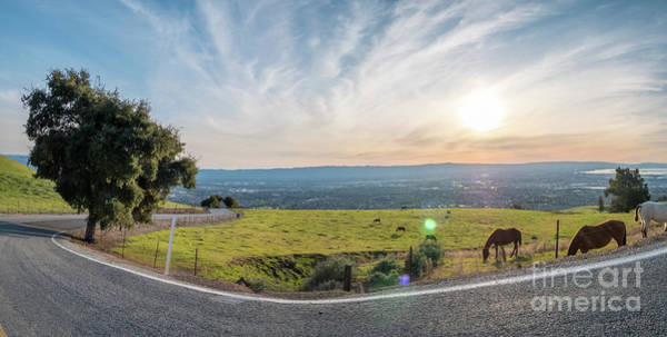 White Wall Art - Photograph - Sharp Curve And Downhill To Silicon Valley With Farm And Horses  by PorqueNo Studios