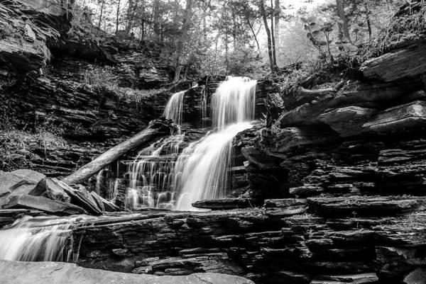 Photograph - Shawnee Falls - 8892 by G L Sarti