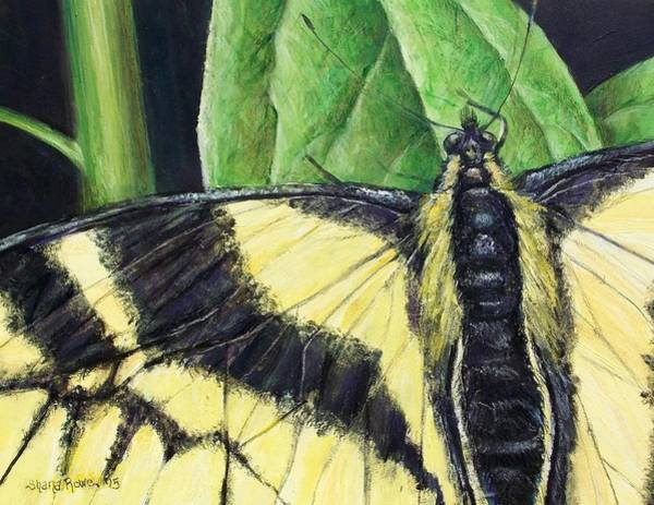 Flutterby Wall Art - Painting - She Dwells In The Garden by Shana Rowe Jackson