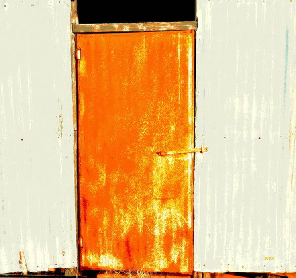 Photograph - Shearing Shed Door 2 by VIVA Anderson