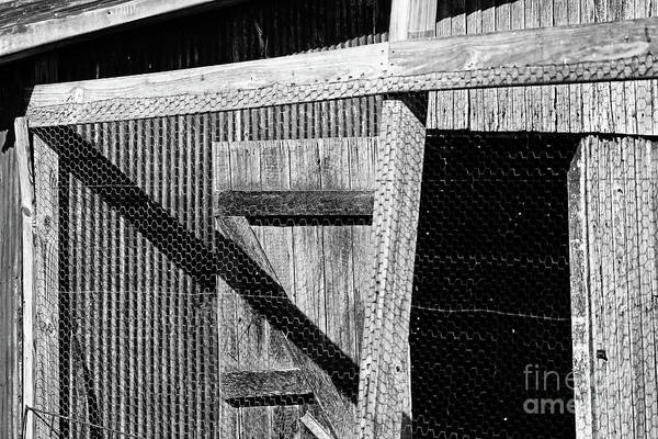 Photograph - Shed Shadows Black And White by Karen Adams