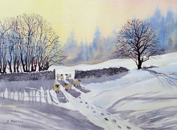 Painting - Sheep And Snow Study 2 by Glenn Marshall
