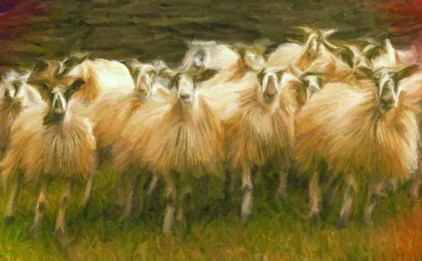 Digital Art - Sheep At Hadrian's Wall by Caito Junqueira