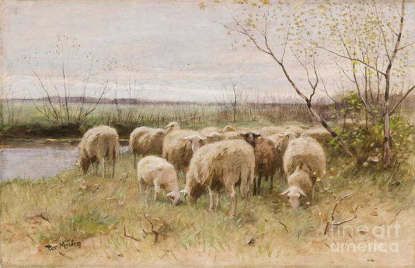 Riverbank Painting - Sheep by Francois Pieter ter Meulen