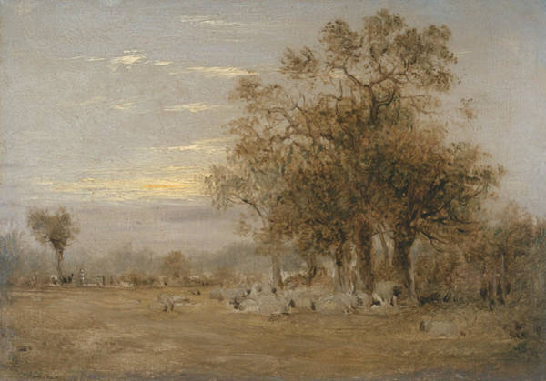 Painting - Sheep Grazing by John Linnell