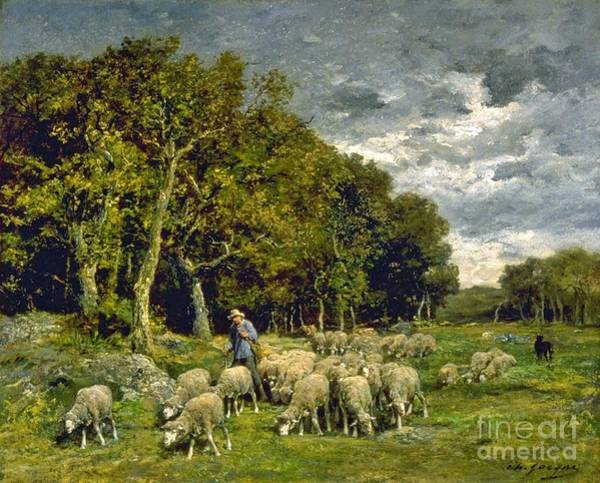 Farmstead Painting - Sheep In A Pasture by MotionAge Designs