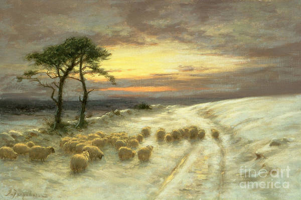 Hills Wall Art - Painting - Sheep In The Snow by Joseph Farquharson