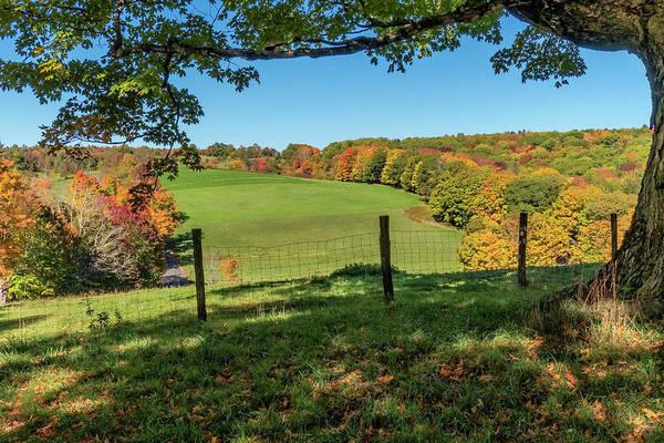 Photograph - Shelburne Autumn by Tom Singleton