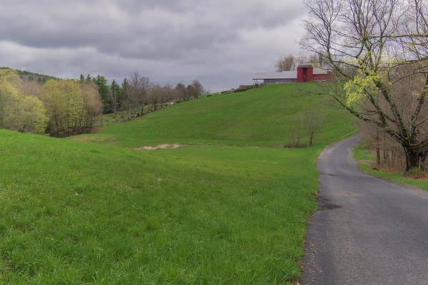 Photograph - Shelburne Country Road by Tom Singleton
