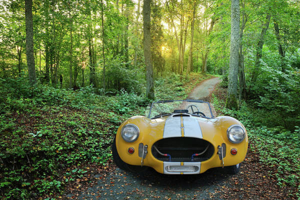 Ac Cobra Wall Art - Photograph - Shelby Ac Cobra In The Woods by Nancy Aurand-Humpf