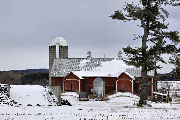 Photograph - Sheldon Barn by Deborah Benoit