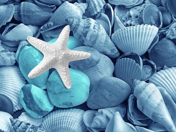 Photograph - Starfish On The Beach In Blue by Gill Billington