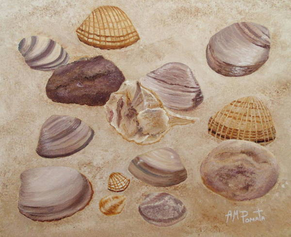 Painting - Shells And Stones by Angeles M Pomata