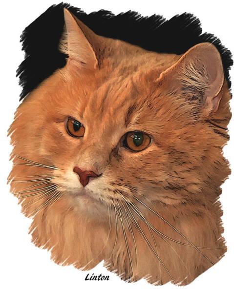 Digital Art - Shelter Cat by Larry Linton