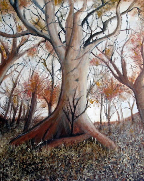 Wall Art - Painting - Sheltered Tree by Benjamin Kubes
