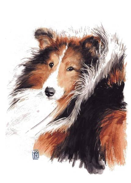Herding Dog Wall Art - Painting - Sheltie by Debra Jones