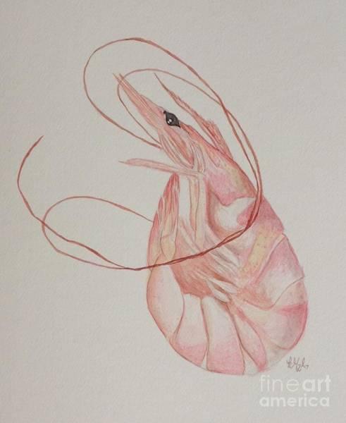Shrimp Painting - Shem Shrimp by Katie Monzel