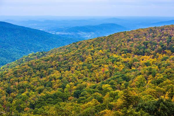 Photograph - Shenandoah Autumn by William Bitman