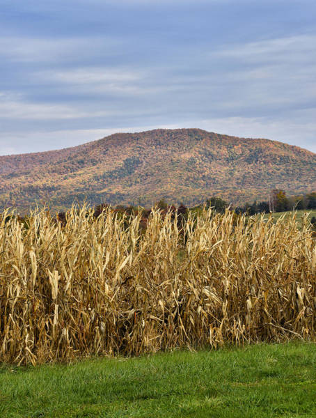 Wall Art - Photograph - Shenandoah Valley - Fall Scene - Virginia by Brendan Reals