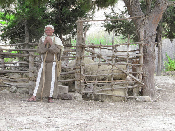 Photograph - Shepherd In Nazareth by Donna L Munro