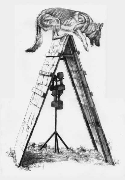 German Shepherd Drawing - Shepherd On A Frame by Patrice Clarkson