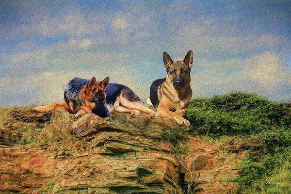 Painting - Shepherds Watching - Painting by Ericamaxine Price