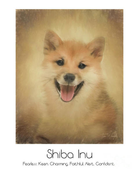 Digital Art - Shiba Inu Poster by Tim Wemple
