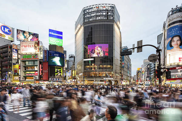 Photograph - Shibuya Crossing In Tokyo by Didier Marti