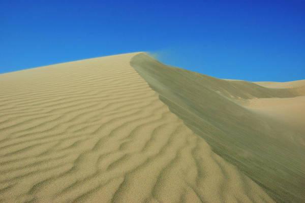 Photograph - Shifting Dune by Lara Ellis