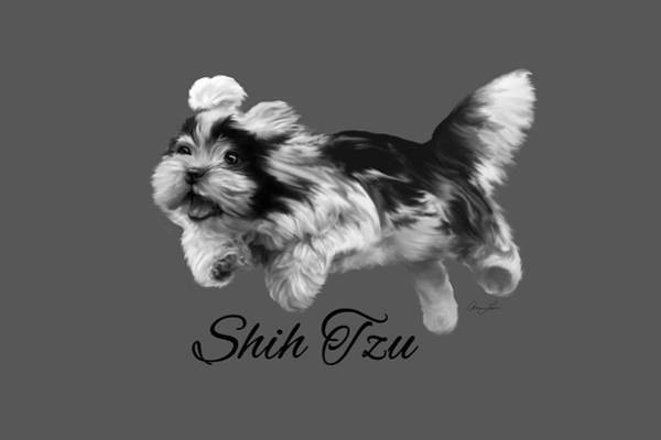 Shih Tzu Art Print