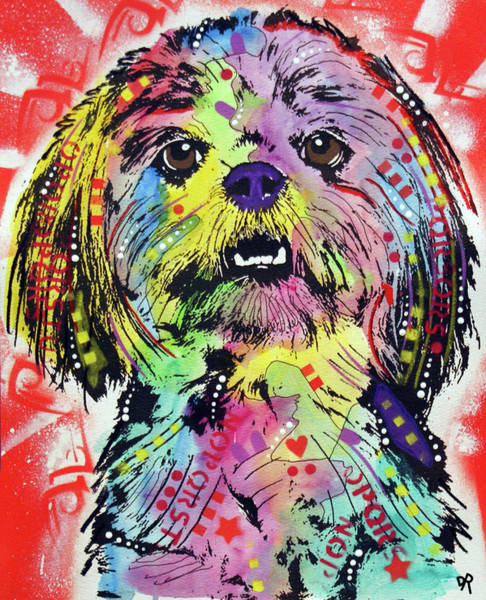Wall Art - Painting - Shih Tzu by Dean Russo Art