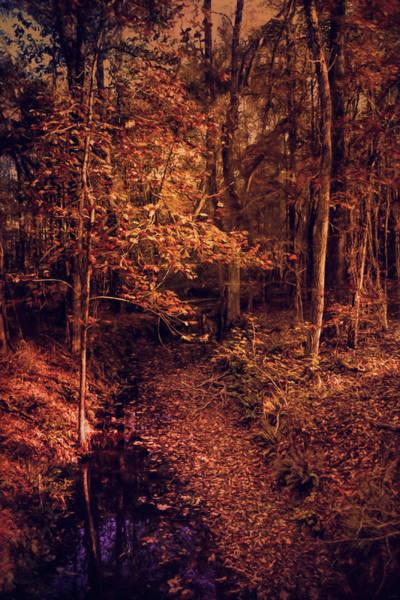 Photograph - Shiloh Creek 1 by Jai Johnson
