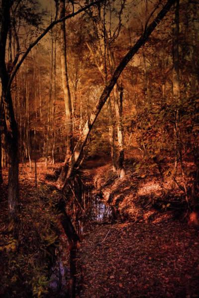 Photograph - Shiloh Creek 2 by Jai Johnson