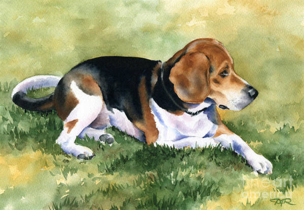Beagle Painting - Shiloh by David Rogers