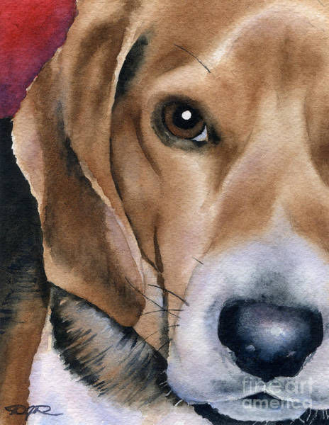 Beagle Painting - Shiloh II by David Rogers