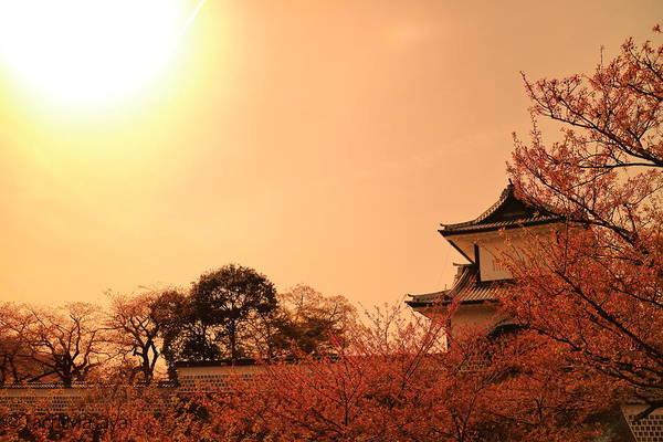 Tachi Photograph - Shine Of Praise by Tachi Masaya