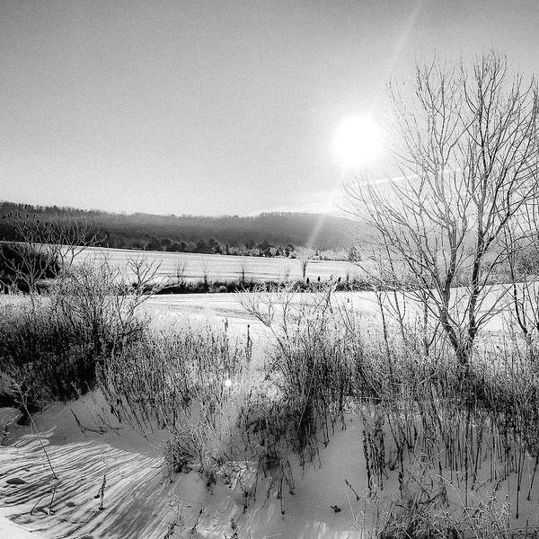 Photograph - Shine On Shine Hill  by Kendall McKernon