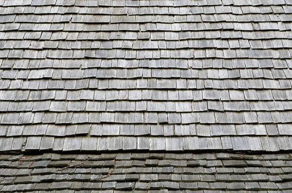 Photograph - Shingles by Nicholas Blackwell