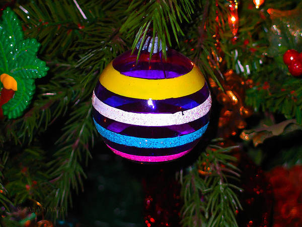 Photograph - Shinny Brite Ornament by Susan Vineyard