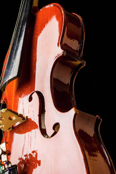 Frets Photograph - Shiny Violin by Garry Gay