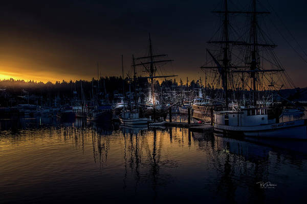 Photograph - Ship Harbor Morning by Bill Posner