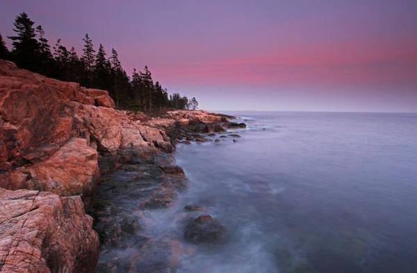 Photograph - Ship Harbor Sunset In Maine Acadia National Park by Juergen Roth