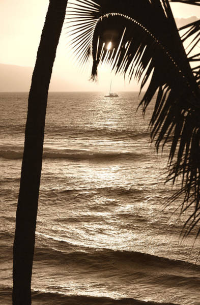 Photograph - Ship In Sunset by Marilyn Hunt