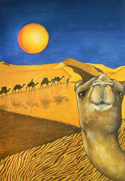 Camel Painting - Ship Of The Desert by Robert Lacy