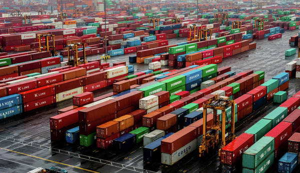 Photograph - Shipping Containers by M G Whittingham