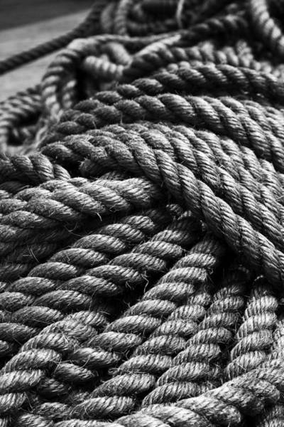 Photograph - Ships Rope Peanut Island Florida by Michelle Constantine