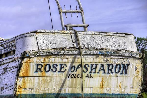 Photograph - Shipwrecked In Bayou La Batre  by JC Findley
