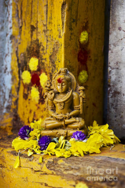 Offering Photograph - Shiva Devotion by Tim Gainey