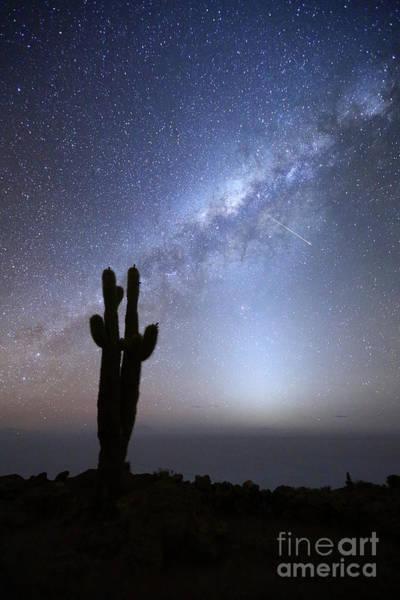 Photograph - Shooting Star Above Incahuasi Island Salar De Uyuni Bolivia by James Brunker